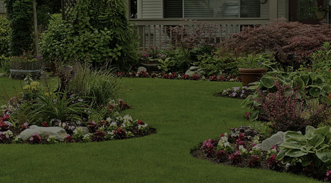 Rutland Landscape Design